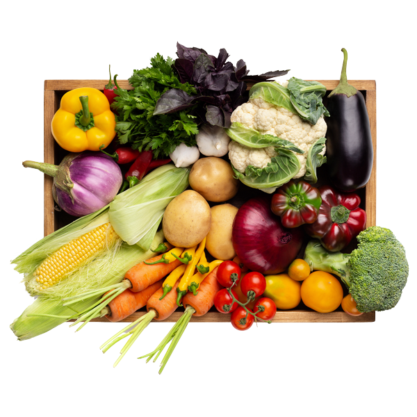 Fresh Vegetables in tray